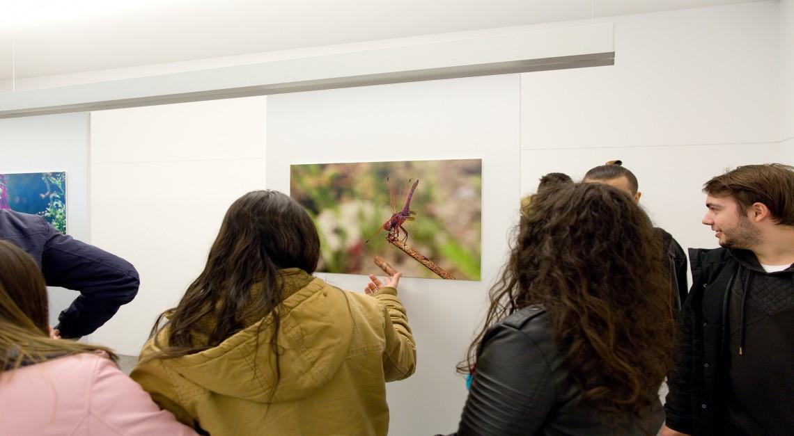 19 a 25 de novembro. Biblioteca de Prado recebe a exposição de fotografia 'Vila Verde para além do Verde'