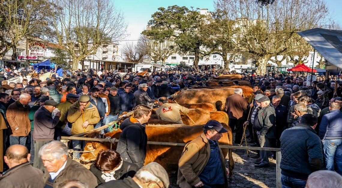 Feira dos Vinte: Tradição secular trouxe milhares ao coração da Vila de Prado